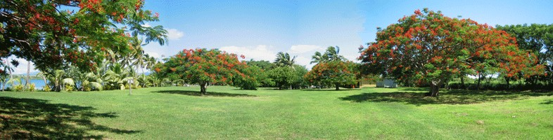 Saweni's Spacious Grounds